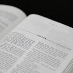聖書の訳の違い©摂理